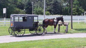 Hestevogn fra Amish, det mest ophidsende billede jag kan vise